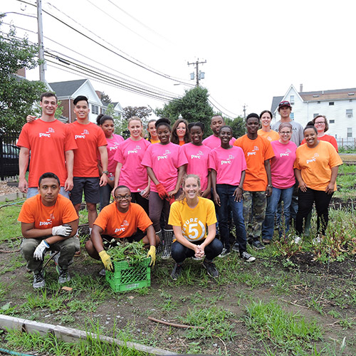 PWC Volunteers at Fairgate Farm
