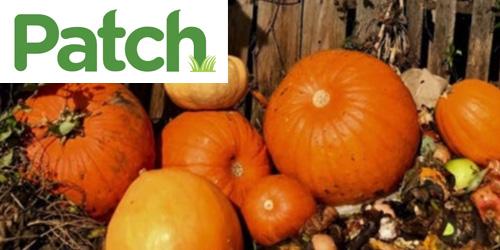 Compost your Pumpkins at Fairgate Farm
